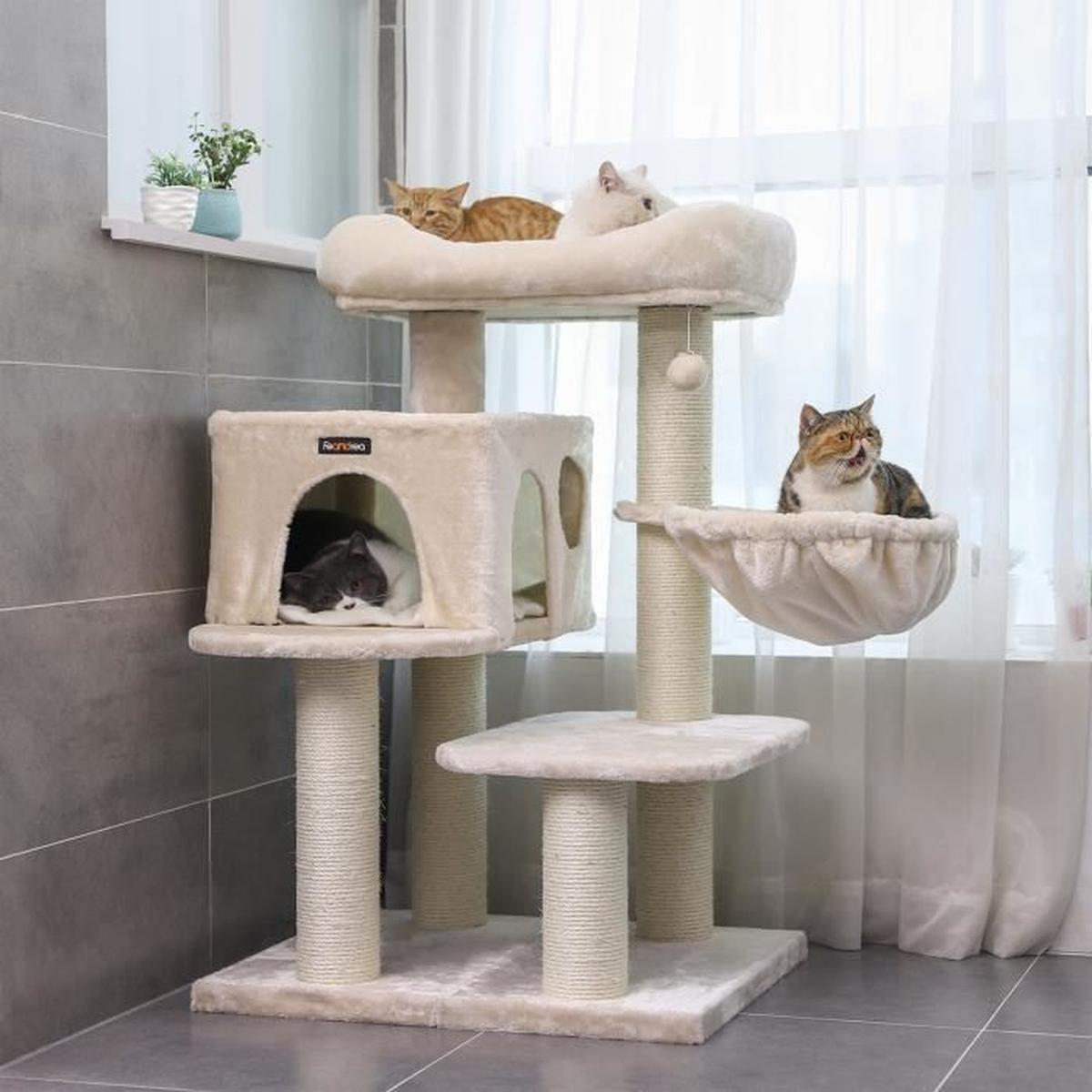 Comment Fabriquer Un Arbre À Chat l'arbre À chat – comment le nettoyer ?
