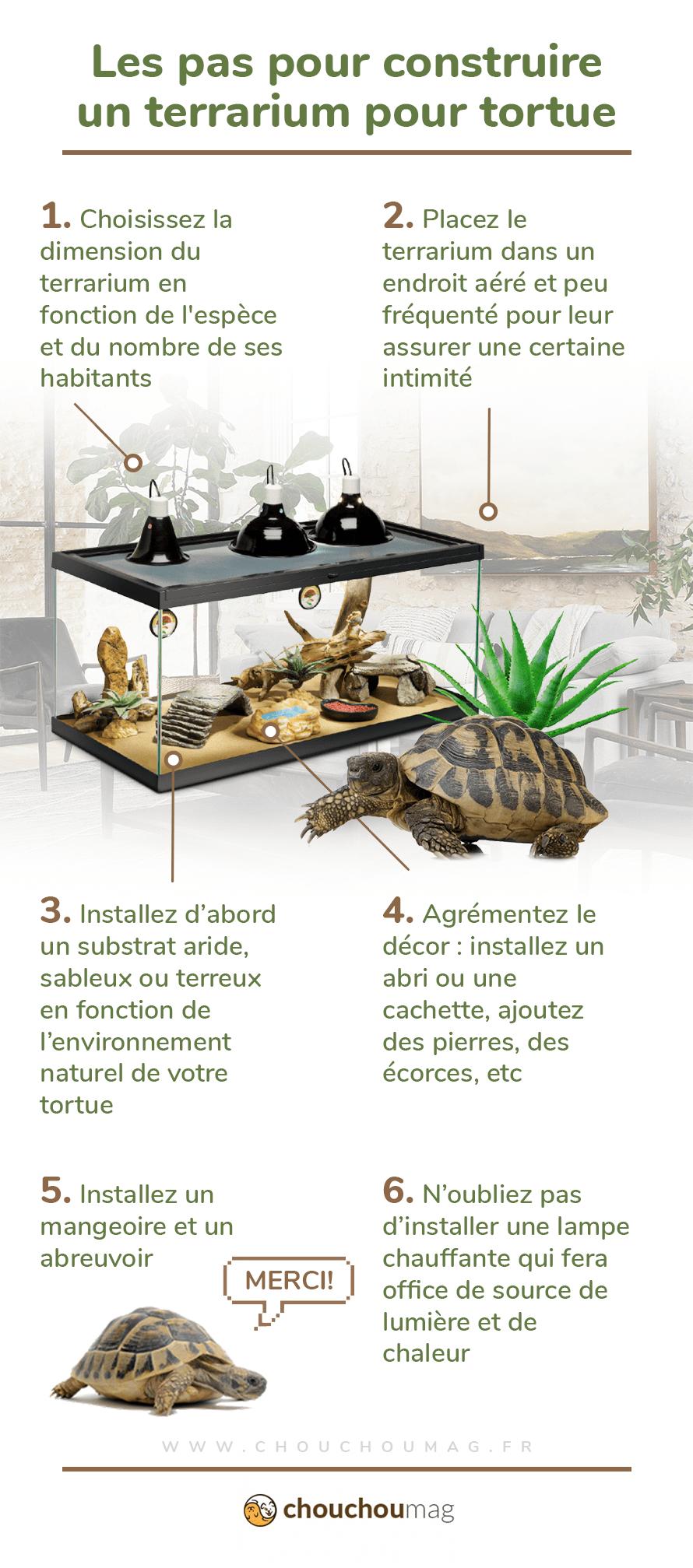 construire un terrarium pour tortue